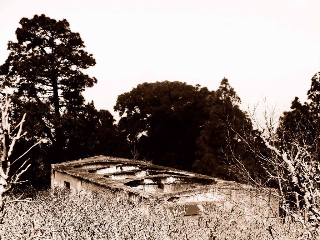 Casa del agua, en la zona de Aguamansa, La Orotava.